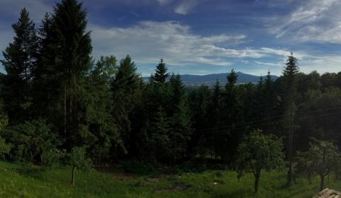 V Rokli, Liberec